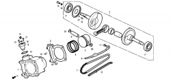 Zylinder / Kolben / Kurbelwelle