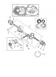 Kolben / Kurbelwelle / Dichtsatz
