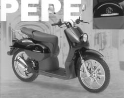 PEPE (-01)