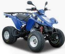 KXR 250 Sport (RFBL300..) Bj. 2004 - 2007