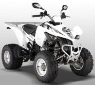 Maxxer 250 Offroad (RFBL30010..) Bj. 2008 - 2012