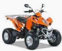 Maxxer 300 Onroad (RFBL30020..) Bj. 2007 - 2012