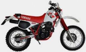 TT 600 (36A) Bj. 1983 - 1984