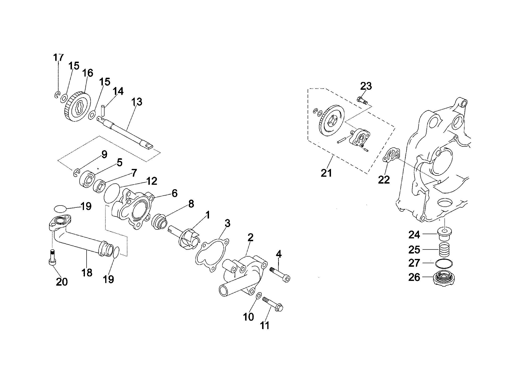 Wasserpumpe / Ölpumpe