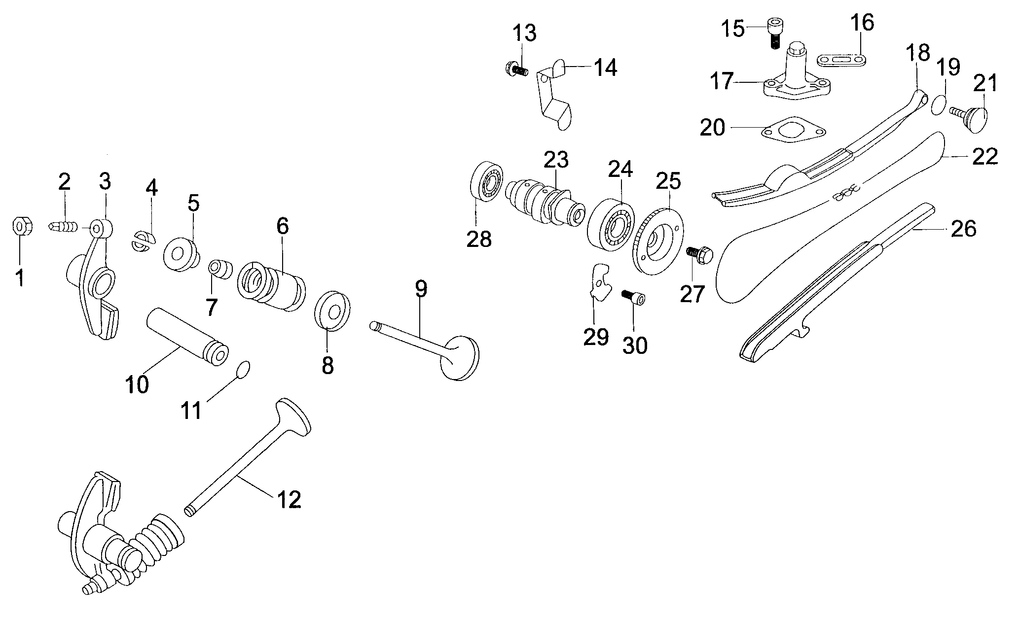 Ventile / Nockenwelle