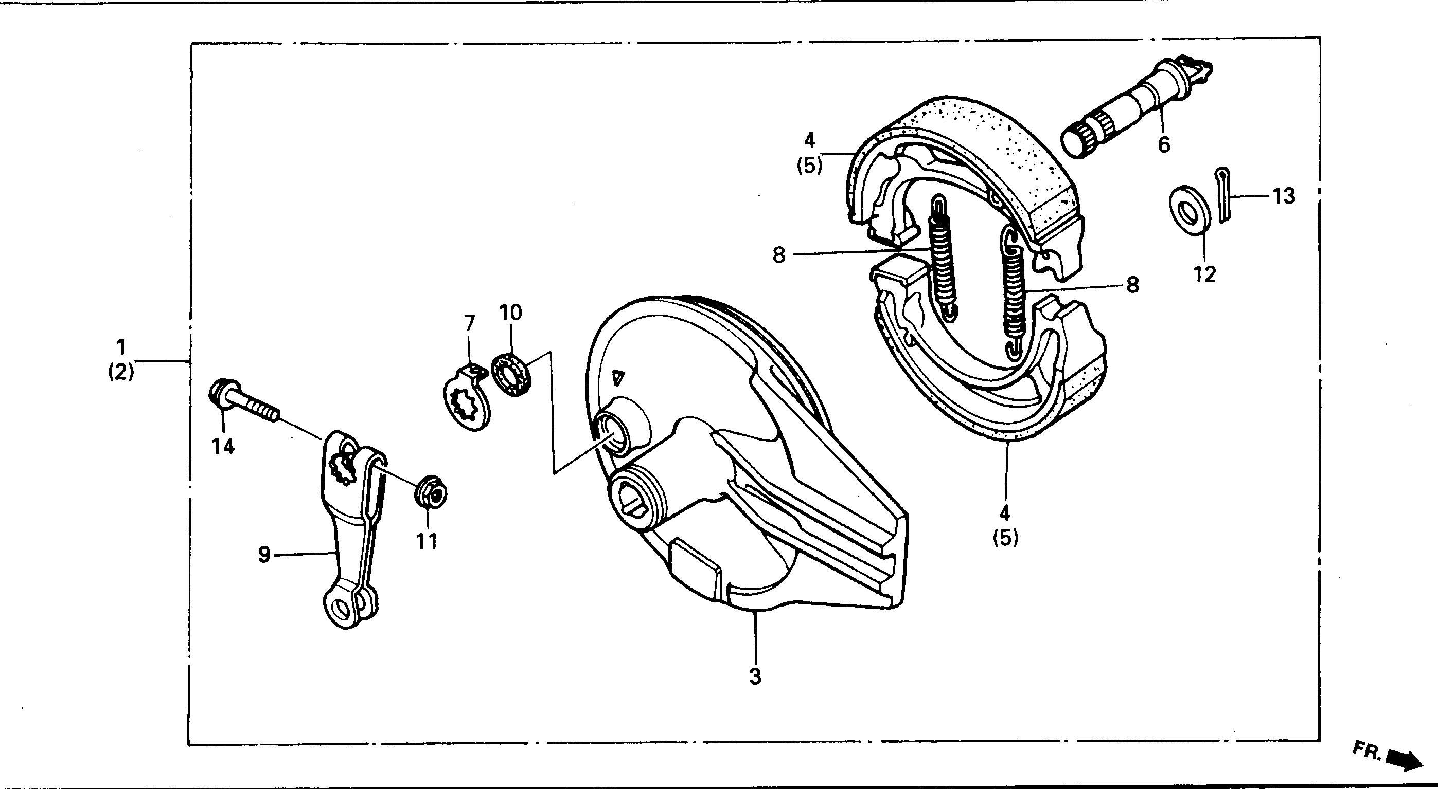 Bremsankerplatte hinten