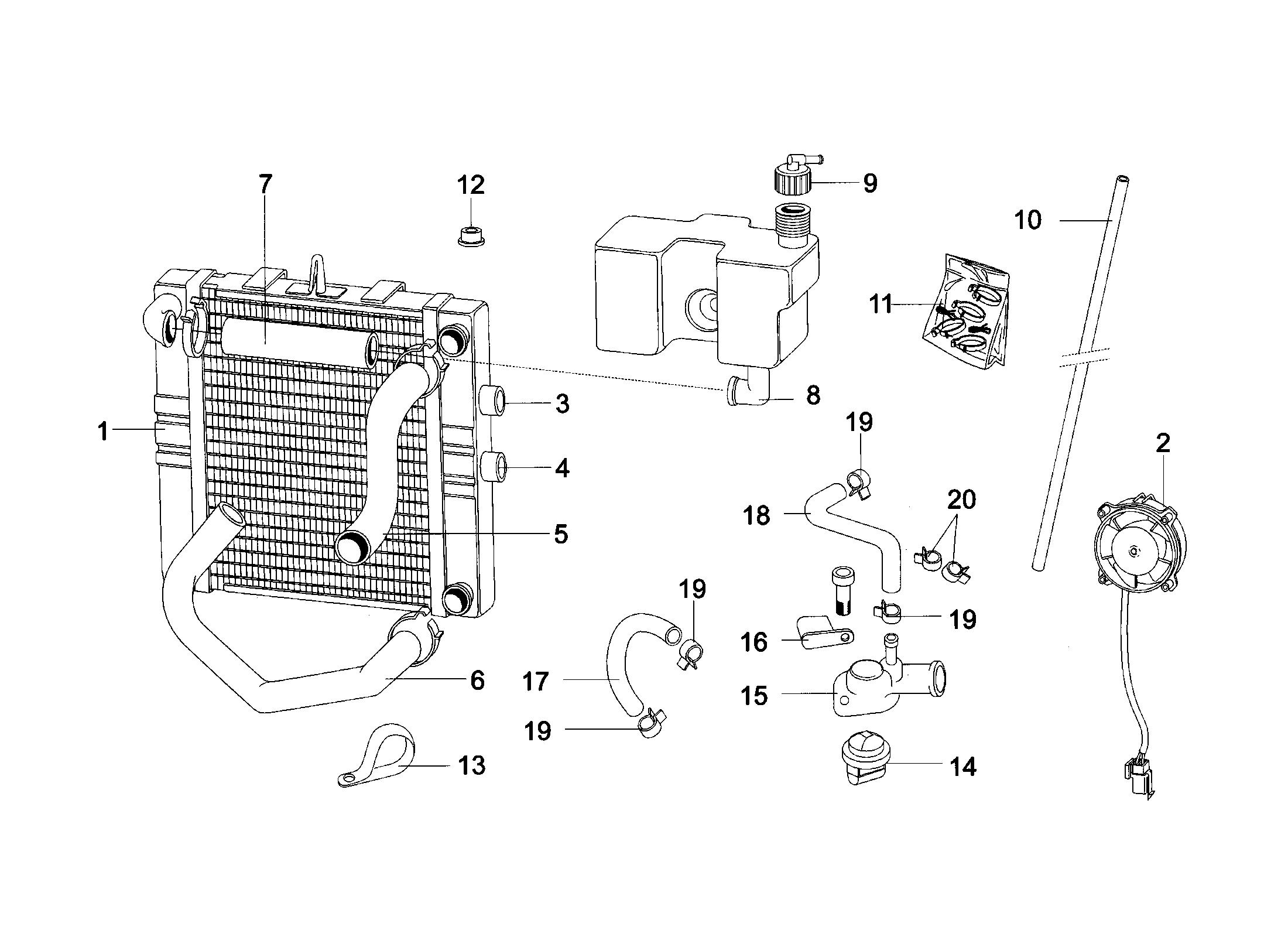 Kühler / Lüfter