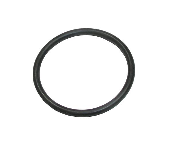 O-Ring 21.1.7