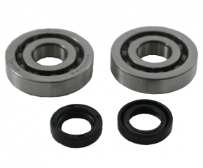 Ball bearings and seal ring kit Piaggio-Gilera 50cc.