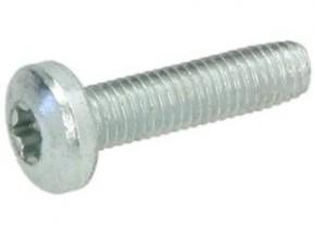 Schraube M5x20 Torx verz.